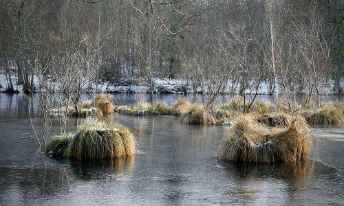 L'étang des Vallées glacé... Le télétravail m'oblige à rester confiné ! Autant vous dire que le week-end venu, j'ai des démangaisons dans les jambes.