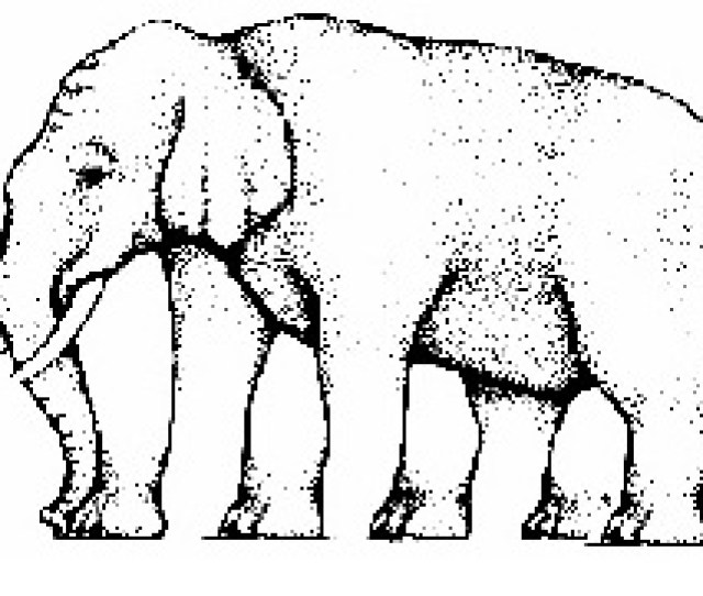 Impossible Elephlant