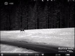 Slika, vidna skozi monokular Pulsar Helion 2 XP50 'Hot Black'