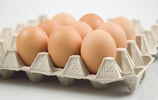 6 eieren per dag