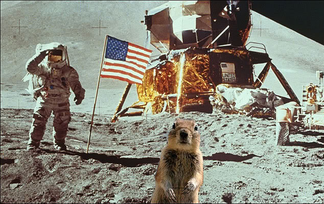Melissa Brandt's Squirrel Photoshopped into Moon Picture