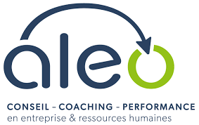 aleo consulting