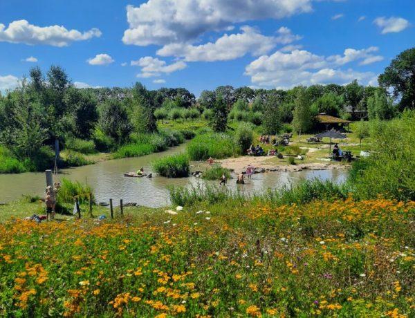 speelbossen-natuurspeeltuinen-zuid-holland