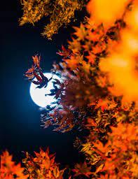 pleine lune équinoxe automne