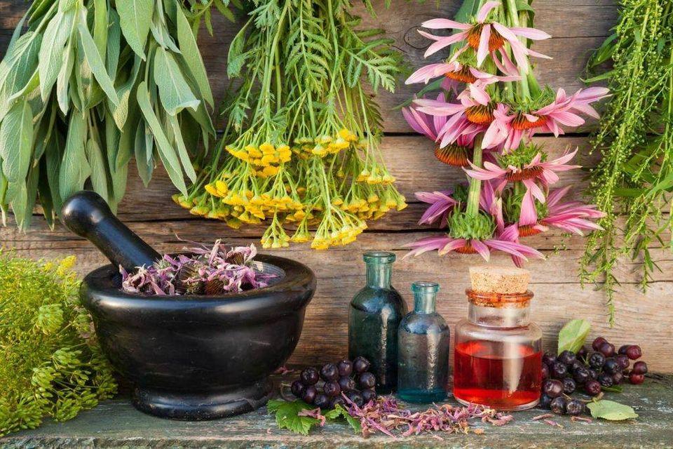herboristerie beauté