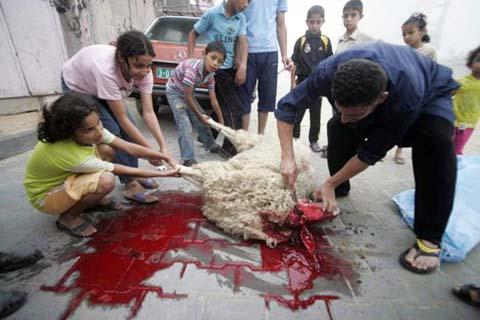 La Festa (o la strage) islamica del Sacrificio
