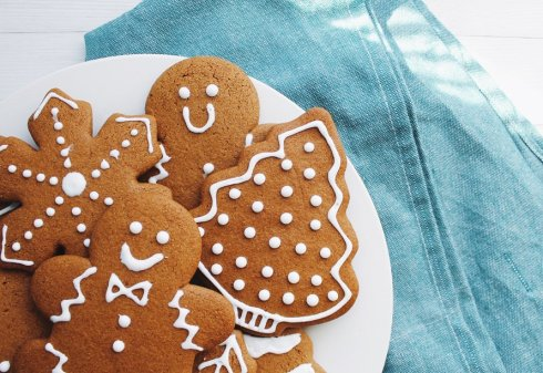 Protein Gingerbread Cookies