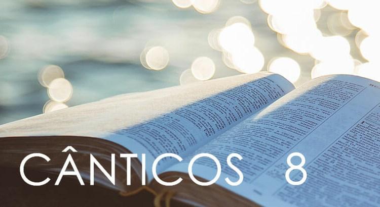 CÂNTICOS 8