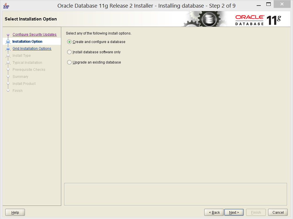 oracle 11 g install option