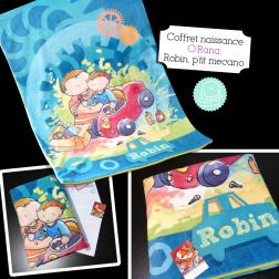robin-mecano