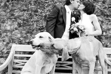 Hochzeitsfotograf Wien Hochzeitsfotos Hochzeitsfotografie boho orangefoto -24