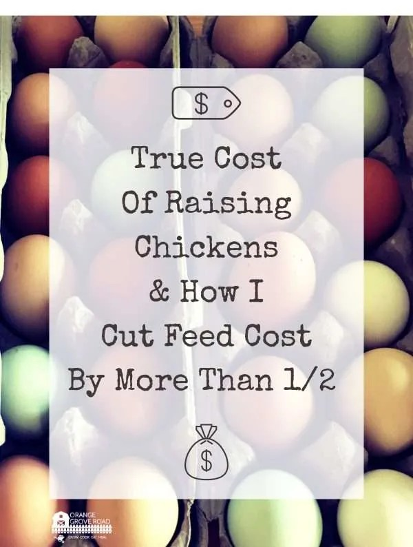 true cost of eggs and how to save