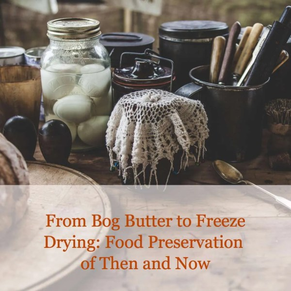 From Bog Butter to Freeze Drying: Food Preservation of Then and Now