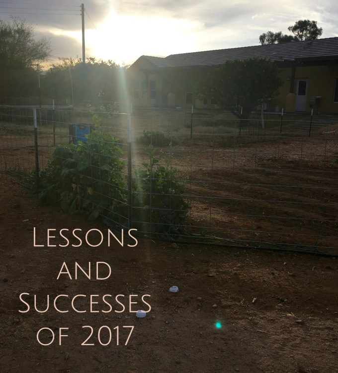 Reflecting on Lessons of 2017. Projections for 2018