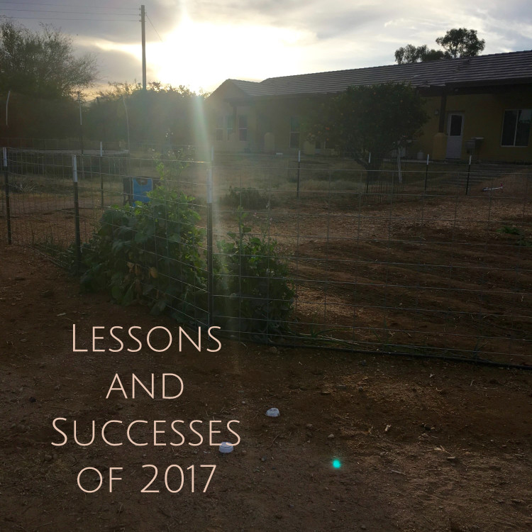 lessons and successes of 2017