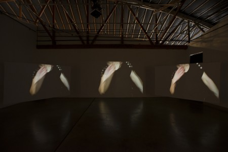 "Kelly Rauer's ""Locate"" at Disjecta/Photo by Mark Stein"