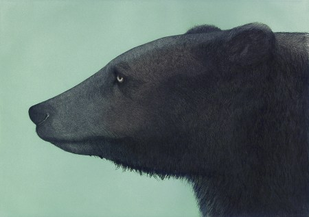 """Brown Bear,"" 1985. Edition of 50. Aquatint, drypoint, and etching with roulette, inked à la poupée, hand colored with watercolor, 14 3/8 x 20 1/4 inches."