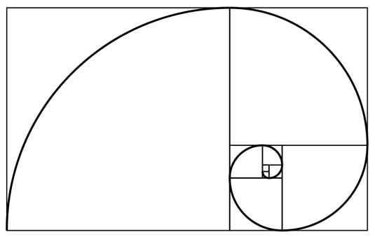 Let's hear it for the Golden Ratio and the Fibonacci Spiral!