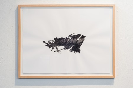 Charcoal from a fire site./Mario Gallucci