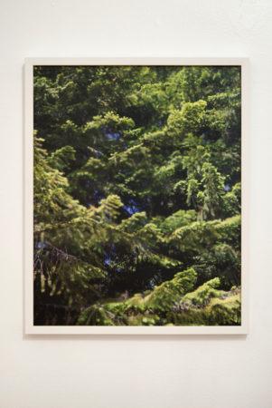 "Teresa Christiansen, ""Shadowed Disconnection""/Courtesy Melanie Flood Projects"