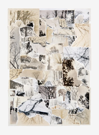 "Joe Rudko, ""Sky Through Trees"", 2016, torn photographs on paper, 15"" x 11"""