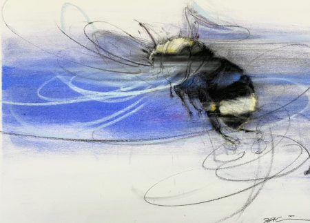bumblebee with swirling lines indicating flight against a blue central band