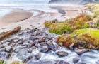 """In """"Manzanita,"""" Charlie Hyman has accentuated the movement of water over rocks. """"Photography has enhanced my awareness of my environment,"""" Hyman says."""