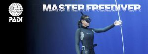 Padi Master Freediver