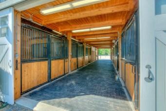 Horse Farm (38 of 46)