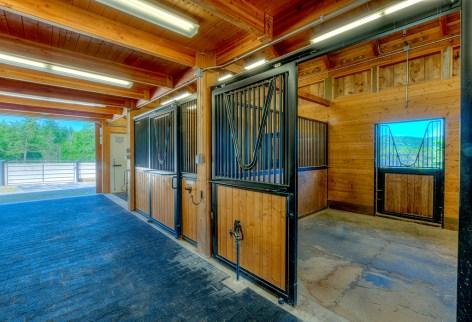 Horse Farm (39 of 46)