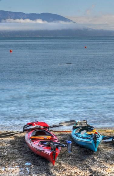 Sea Acres Community Beach Kayaking