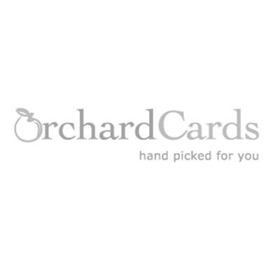 Orchard Cards Beautiful Handpicked Greeting Cards