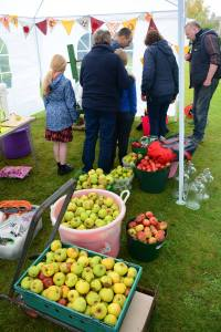 A photo of baskets filled with apples and people gathered around an apple press