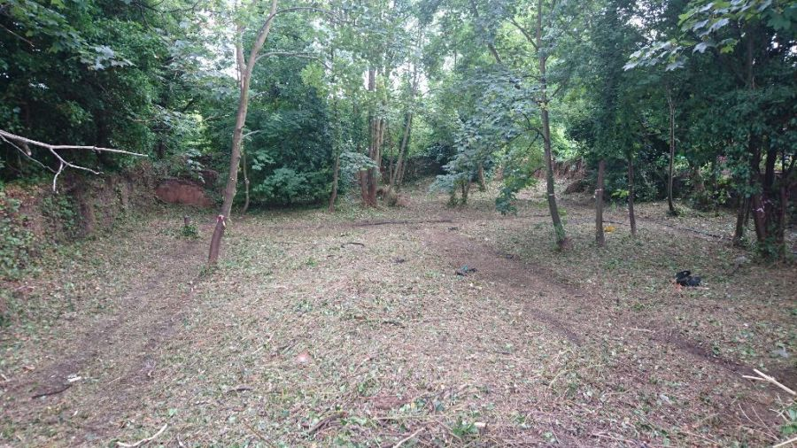 Conservation Area Clearance in The Park, Nottingham, NG7 After Side
