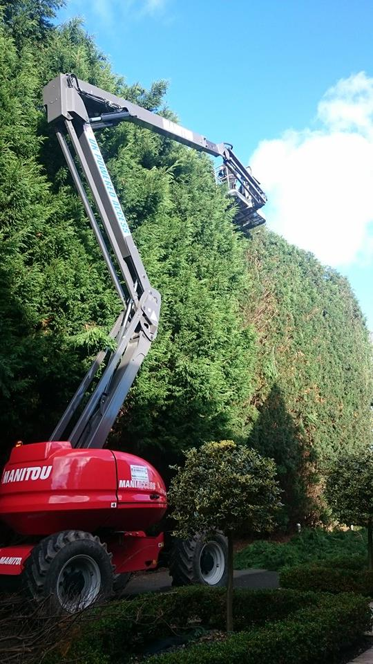 Large Hedge Reduction using a MEWP. Nottingham