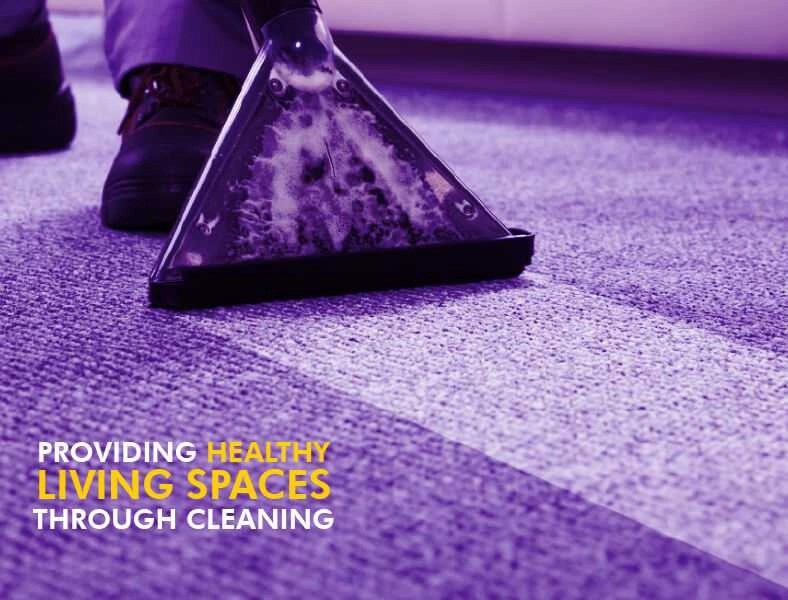 Carpet & Upholstery Orchid Cleaning Services