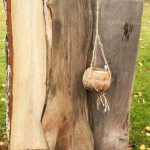 Ampel av kokosfiber, för 7 cm bred kruka