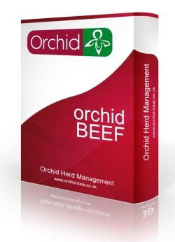 Orchid Beef Cattle Software