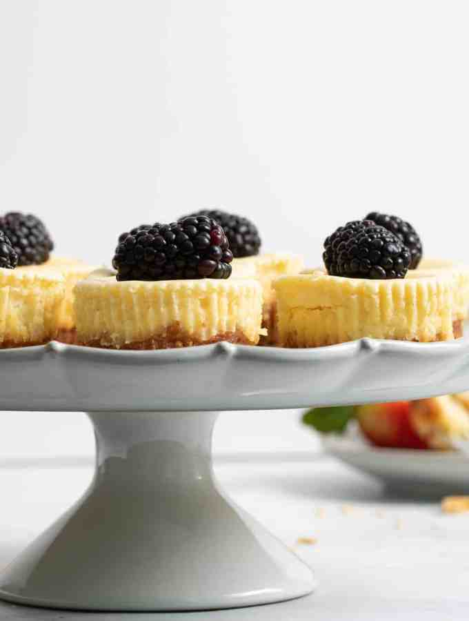 New York-Style Cheesecake Bites