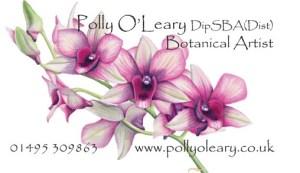 Polly DipSBA card