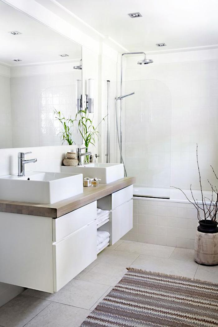 Limpiar el baño en 5 minutos - Orden y Limpieza en Casa