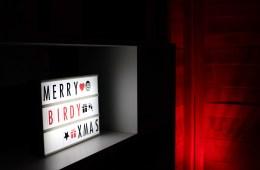 Merry Birdy xmas