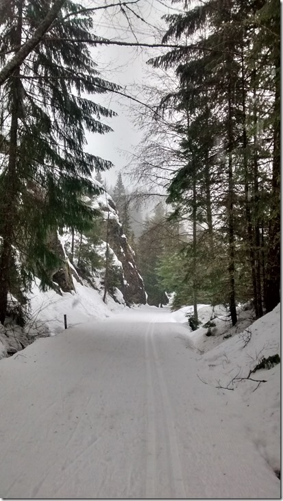 Groomed ski trail in Lake Easton State Park