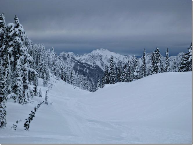 Paradise Mt Rainier Tatoosh views snowshoeing