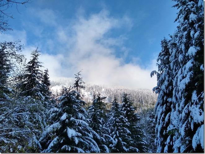 early season snow near seattle