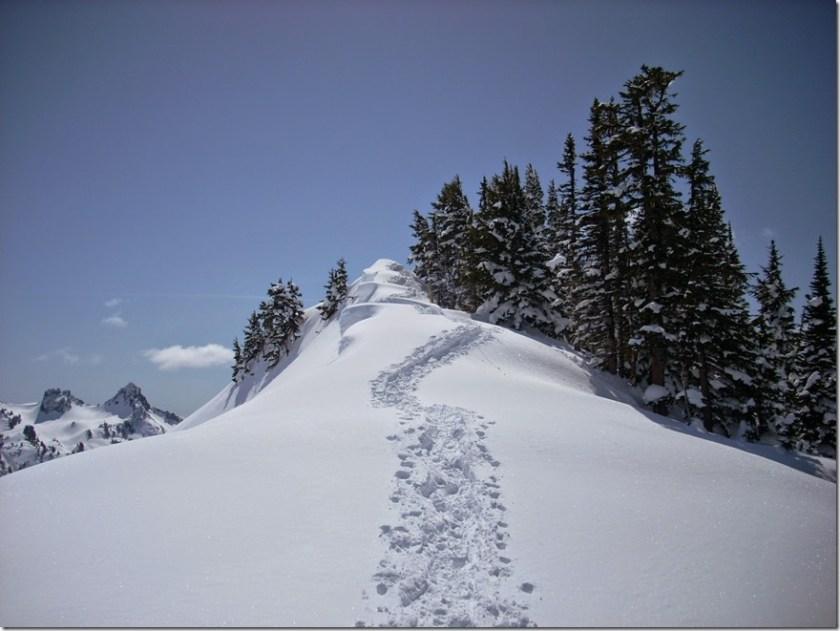 winter day trip mt rainier alta vista snowshoe