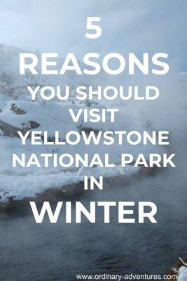Steaming river flows through snow covered rocks and hills. Text reads 5 reasons you should visit Yellowstone National park in winter