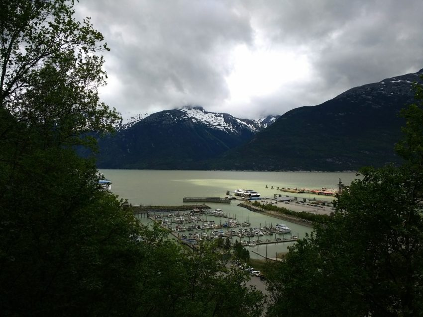 A harbor on a fjord with snowcapped mountains in the background and trees in the foreground