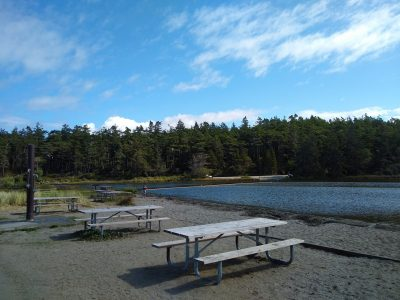 Three picnic tables in the sand next to a lake that is surrounded by forest on a sunny day.