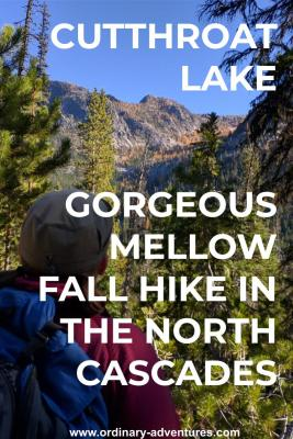 A person with a red shirt, blue backpack and beige hat looks at a distant mountain. The person is surrounded by pine trees. In the distance are higher mountains and some orange fall color trees. Text reads: Cutthroat Lake Gorgeous mellow fall hike in the North Cascades